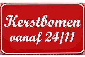 Echte kerstboom kopen Oost-Vlaanderen